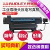 郑州奥德利S8000-3爱普生高速喷头压电写真机